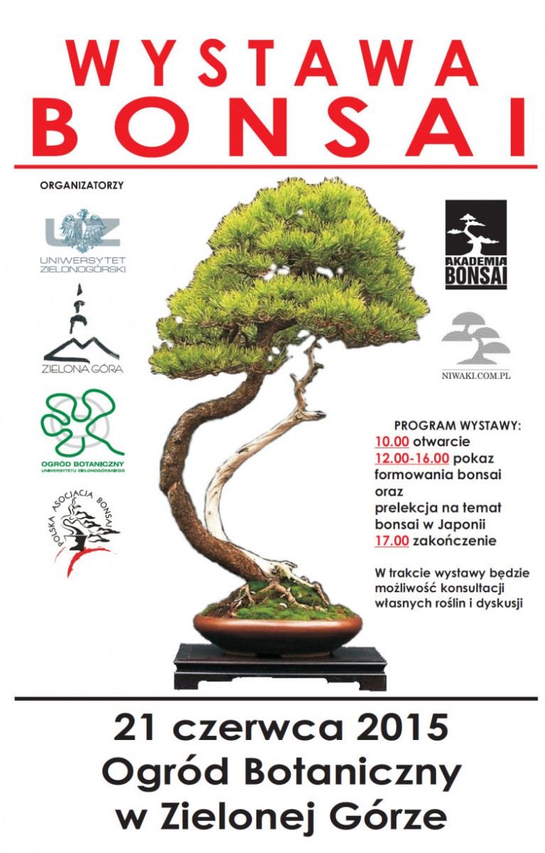 plakat promujacy II wystawe bonsai